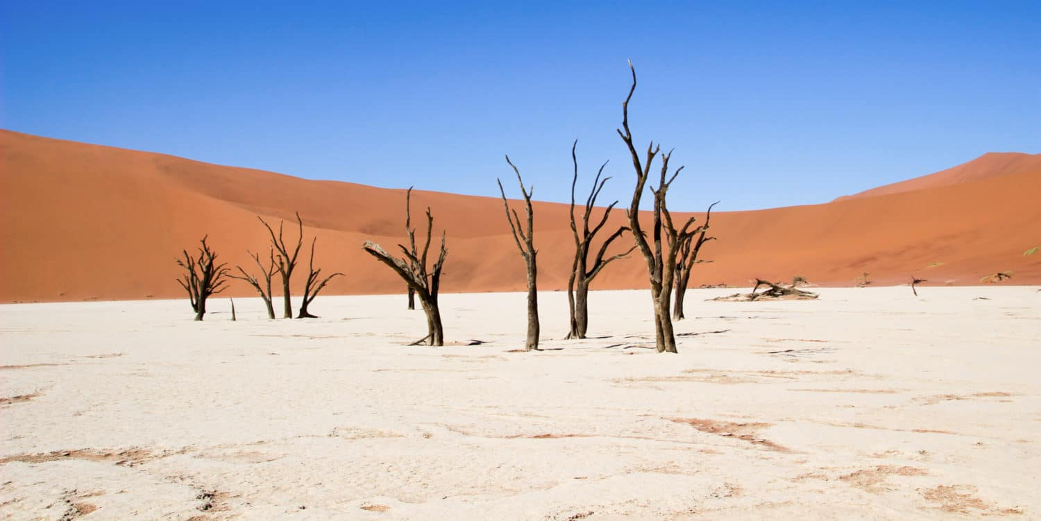 Deadvlei Namibia Live More Travel More