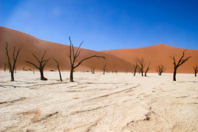 Live More, Travel More in Namibia with Chameleon Safaris - photo by Elaine Villatoro - Sossusvlei - Sand Dunes - Deserto da Namibia - Deadvlei - Dead Vlei - Dead Trees - Árvores Mortas  - Desert of Namibia - Deserto da Namíbia