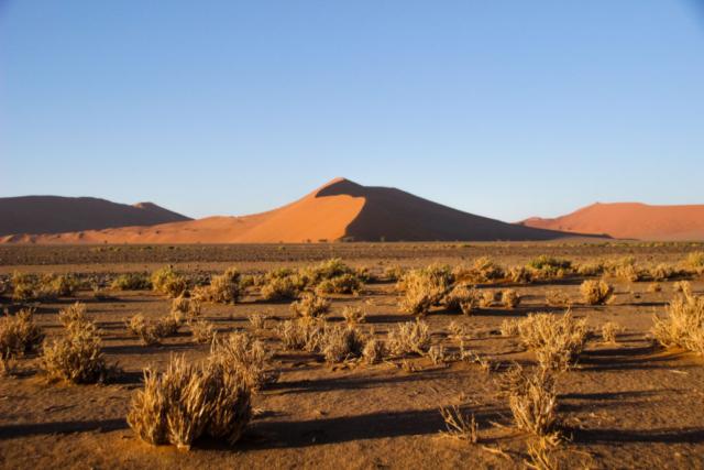 Live More, Travel More in Namibia with Chameleon Safaris - photo by Elaine Villatoro - Sossusvlei - - Sand Dunes  - Deserto da Namibia - Dunas - Dune 45