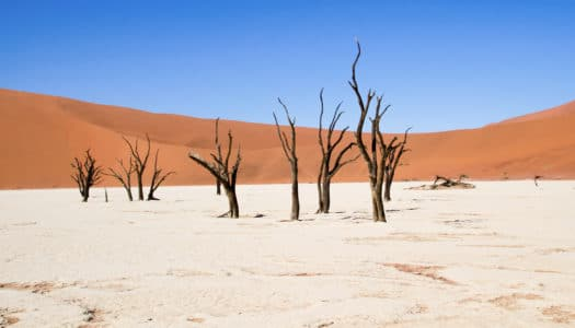 3 Days Itinerary – Namib Desert