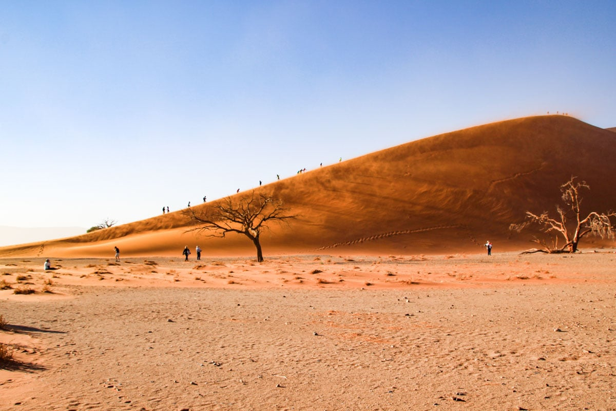 Dune 45 in Sossusvlei Namibia