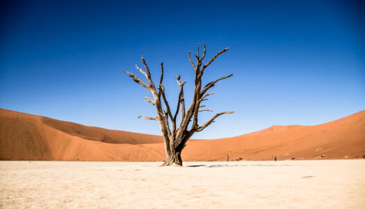 NAMIBIA – SOSSUSVLEI TOUR – 5% DISCOUNT WITH CHAMELEON SAFARIS