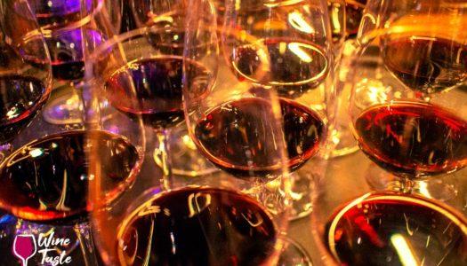 CHILE – WINE TASTING – 5% OFF + BONUS* WITH WINE TASTE 360