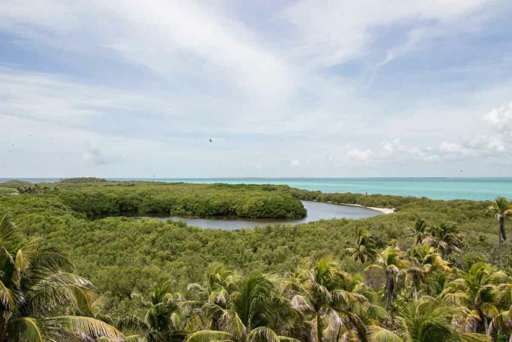 Contoy Island, one of the best attractions in Yucatán Peninsula